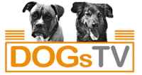 DogsTV Kursplattform
